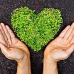 Benefits of an Eco-Friendly Lifestyle