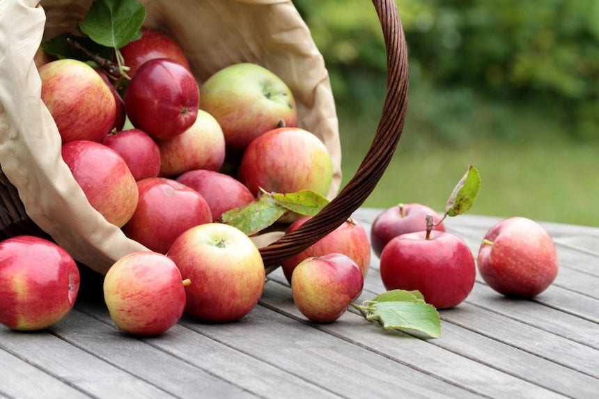An-Apple-a-Day-Why-You-Need-Healthy-Snacks-to-Support-Your-Teeth-acw-anne-cohen-writes