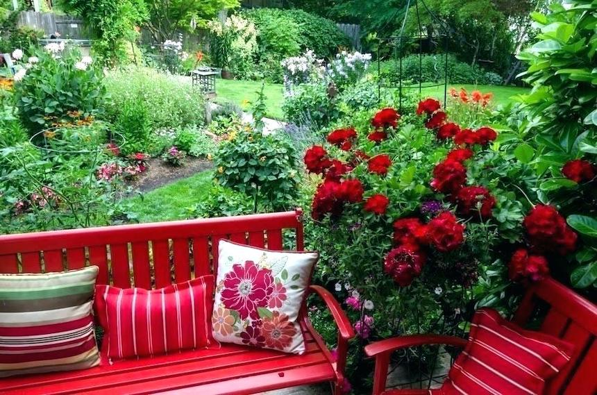 Colour-Pop-6-Simple-Ways-to-Add-Colour-to-Your-Garden-acw-anne-cohen-writes