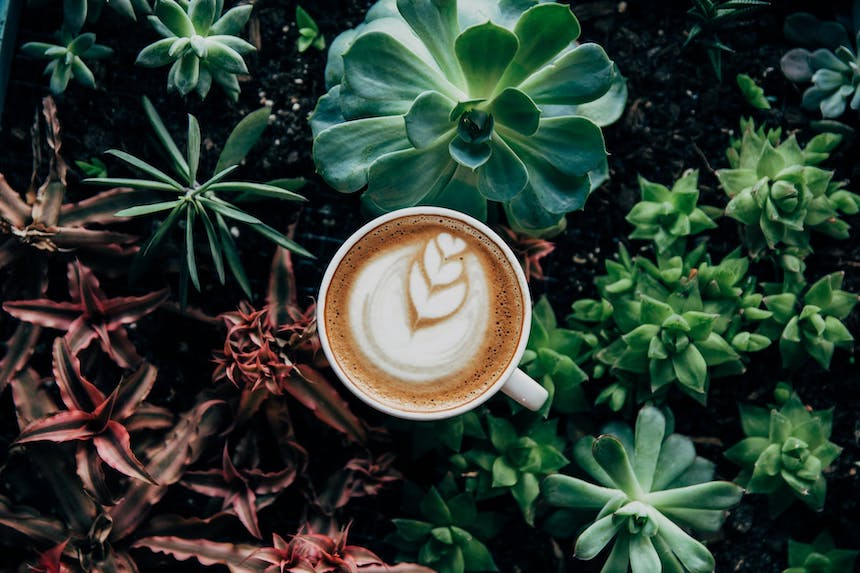 10-Signs-You-Might-Be-Addicted-to-Coffee-anne-cohen-writes