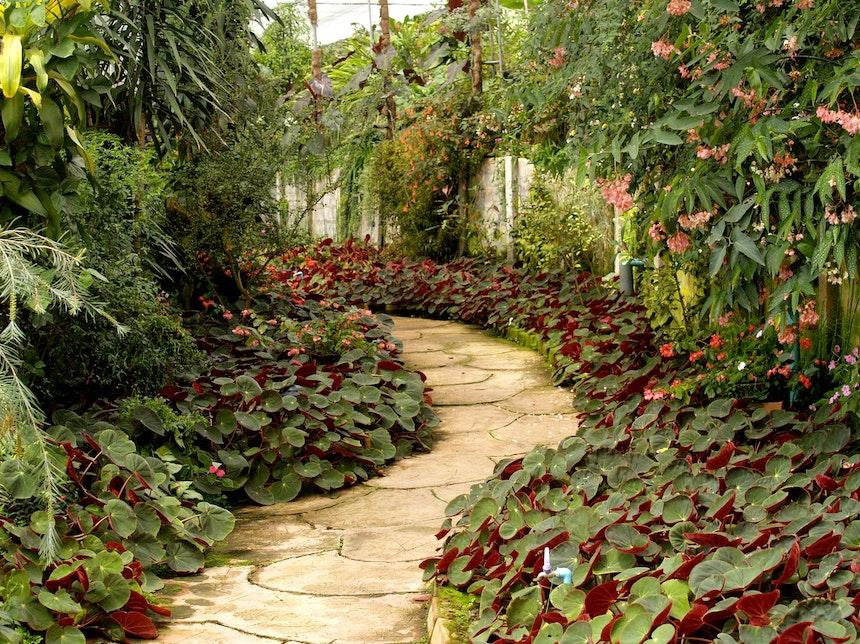 6-Ways-to-Improve-the-Look-of-Your-Backyard-garden