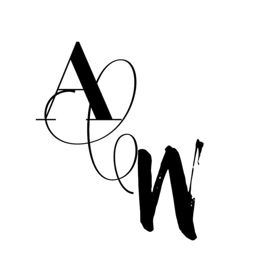 anne-cohen-writes