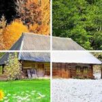 How To Prepare Your Home for Every Season