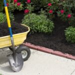 Landscaping Projects You Can Start Before the Weather Warms Up