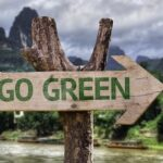 3 Smart Ways Cities Can Become Eco-Friendly